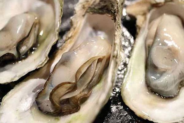 牡蛎 (7).jpg